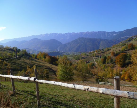 The View From My Window: Romania